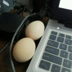 Cooking Eggs In Office