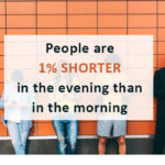 People are 1% Shorter in the evening than in the morning