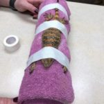 This is how to give a lizard an x-ray
