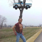 Just car on top of a tree